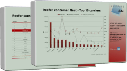 reefer container fleet
